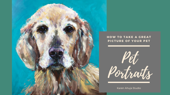 How To Take Great Pictures for Your Pet Portraits